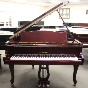 Products | WS Pianos